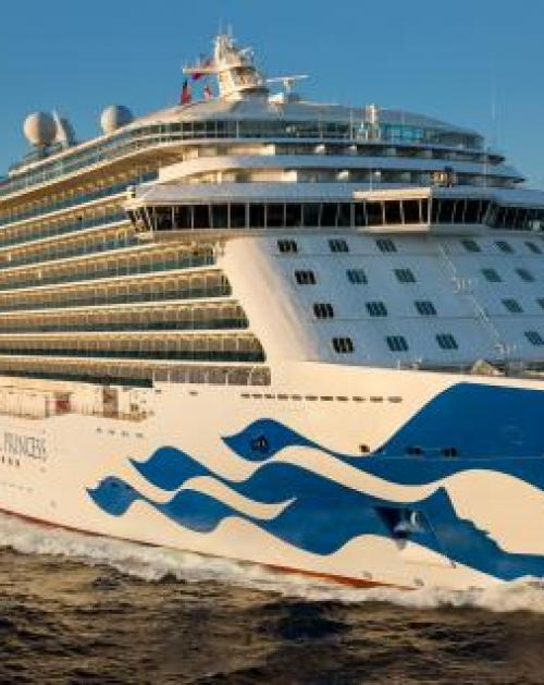 Princess Cruises with Fahy Travel